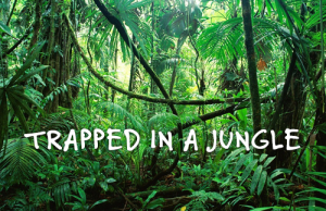 Trapped in a Jungle Escape Room Thumbnail